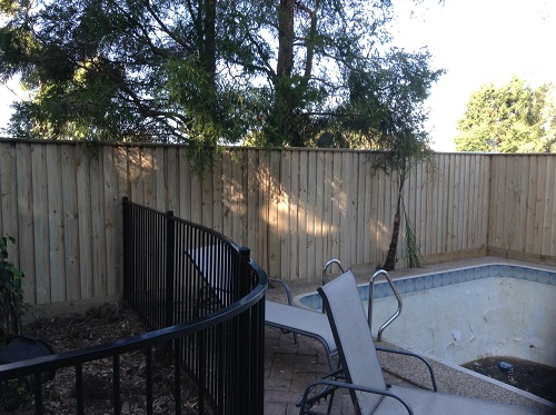 Pool Fencing Sydney - Wood Pailing and Aluminium